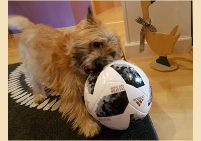 Im März kämpft Wilma mit dem Ball